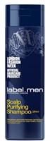 label.M men Scalp Purifying Shampoo - Шампунь для Очищения Кожи Головы 250мл